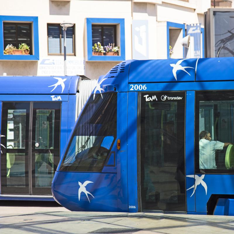Os 30 Melhores Hot U00e9is Em Montpellier
