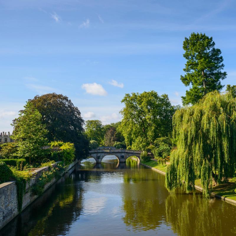Cambridge Apartments For Rent. Apartment Rentals In