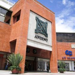 Shopping Center Andino
