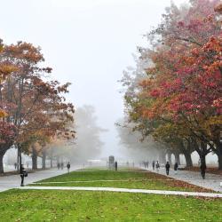 Universidad de Columbia Británica