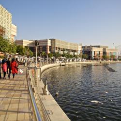 עיר הפסטיבלים בדובאי, דובאי