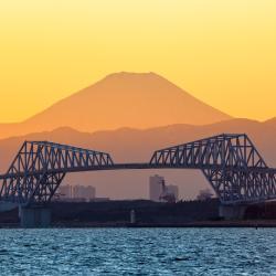 Tokyo Gate Bridge