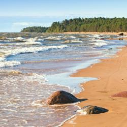 Baltic Sea 77 villas
