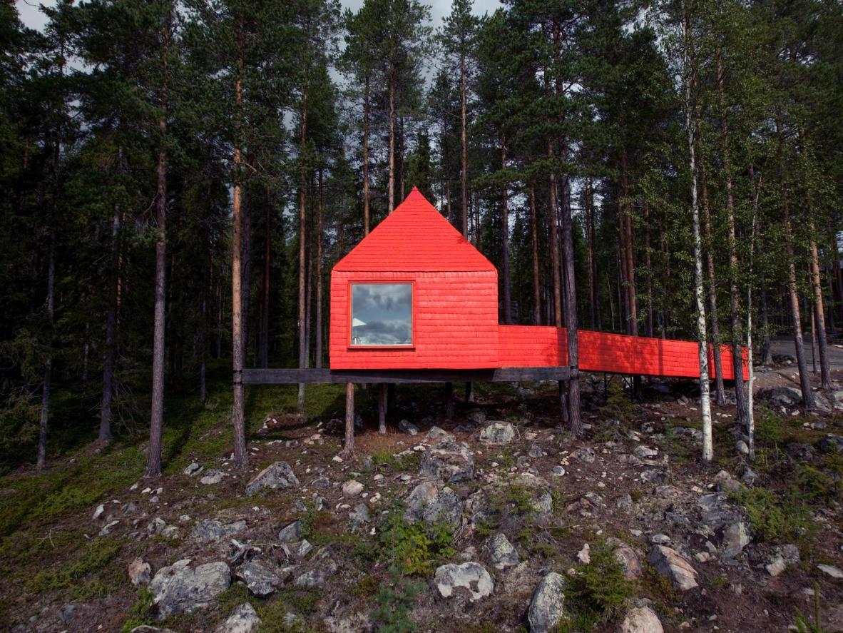 Faça uma longa caminhada pela floresta – você verá sua cabana a 1,5 km