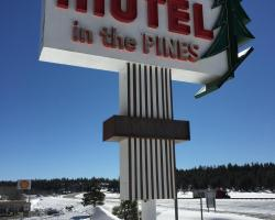 Motel In The Pines