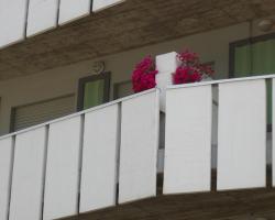 Appartamenti Primula Uno