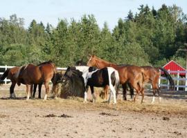 Farm stay Ruteniya, Vsevolozhsk