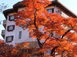 Hashimoto Hotel