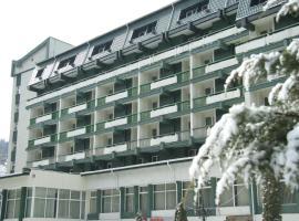 Hotel Bradul, Vatra Dornei
