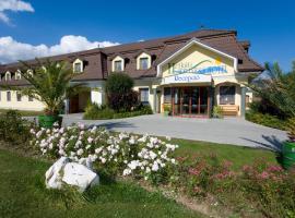Hétkúti Wellness Hotel és Lovaspark, Mór