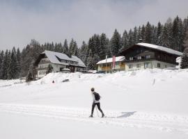 Hotel Tischlberger, Ramsau am Dachstein