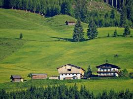 Ferienhaus Hochwimmer, Hollersbach im Pinzgau