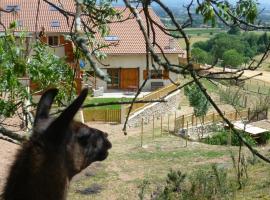 La Bruyère aux Lamas
