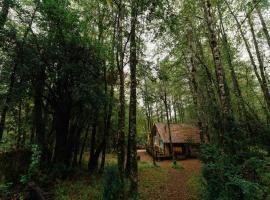 Huilo Huilo Cabañas del Bosque, Puerto Fuy
