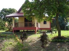 Suancha Tea Garden, Mae Chan