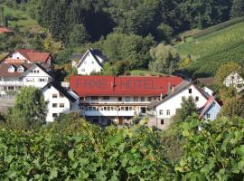 Schwarzwälder Hof, Kappelrodeck