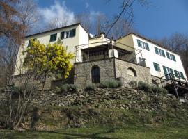 Villa Maia, Neirone