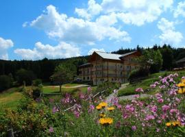 Berghotel Mooshütte, Lohberg