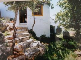 Casa Amarilla, Parauta