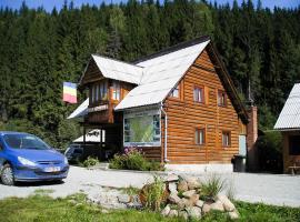 Vila Ioana, Padis