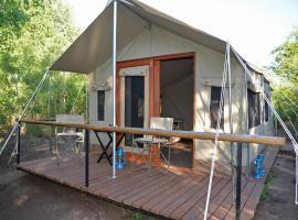 The Wild Olive Tree Camp, Manyeleti Game Reserve