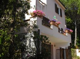 Villa Verde, Procchio