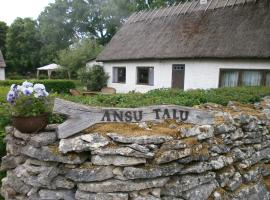 Ansu Guest House, Leisi