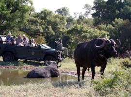 , Timbavati Game Reserve