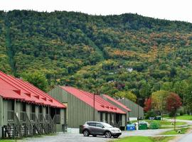 Les Chalets Alpins - Chemin des Adirondacks, Stoneham