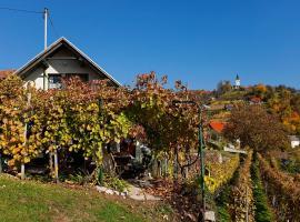 Vineyard Cottage Vercek, Novo mesto