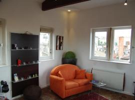 Appartement LaTour-Lyon, Lion