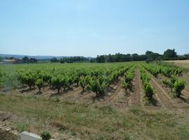 La Vigne, Saint-Just