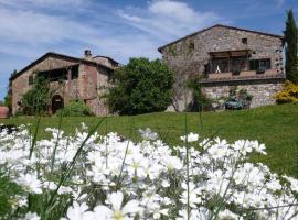 Colle ai Lecci, Castelnuovo Berardenga