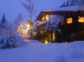 Luxus Chalet Mühlermoos, Ramsau im Zillertal
