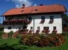Pension Bauerborchardt, Wernberg