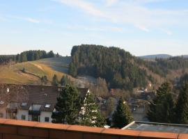 Ferienwohnung Harz, Altenau