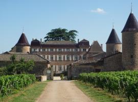 Gîte du Chateau de Chasselas, Chasselas