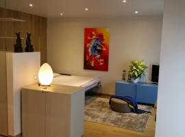 Via Giacomo Brentani Apartment, Lugano