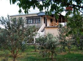 U Rafa Guest House, Pizunda