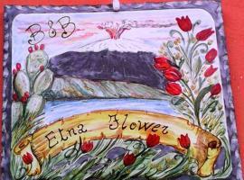 B&b Etna Flower, Belpasso