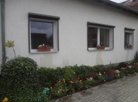 Alteschule15, Leibsch