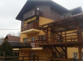 Pension Vila Melinda, Petroşani