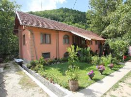 Milojkovic Accommodation, Ribarska Banja
