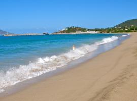 Zenith Nevis, Nevis