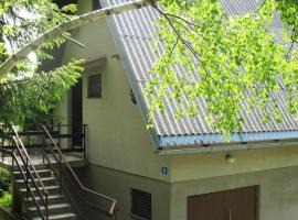 Badurina Lič House, Lič