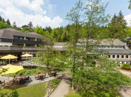 Romantik Hotel Stryckhaus, Willingen