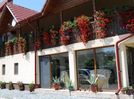 Pensiunea Casa Filoxenia, Horezu
