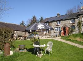Five Saints Riding Centre & B&B, Pumpsaint