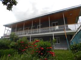 INEZA'S GUEST HOUSE, Kazbegi