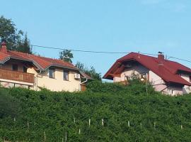 Apartment Hisa Sumrak, Bizeljsko